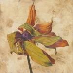 la-mort-de-gardenia